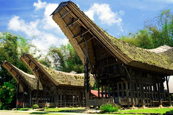 Traditional Village Tana Toraja Tour